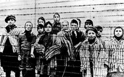 Бухгалтер Освенцима предстал перед судом в Германии