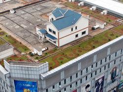 Китайский предприниматель построил себе дом на крыше многоэтажки
